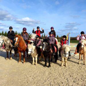 Inscriptions aux journées de stages d'équitation